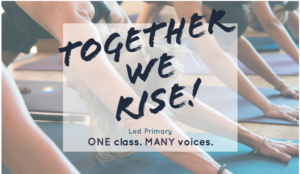 Together we rise Ashtanga Yoga Dispatch