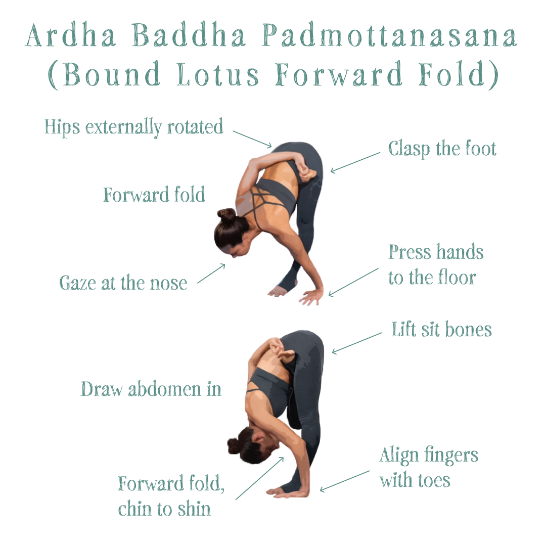 Yoga Pose Tutorial: Ardha Baddha Padmottanasana (Bound Lotus Forward Fold)