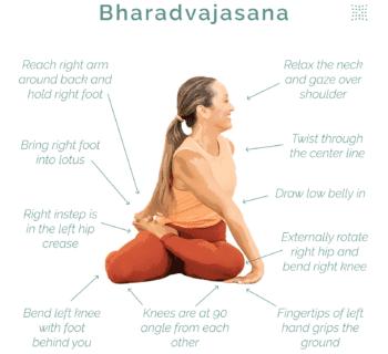 Weekly Pose Tutorial: Bharadvajasana